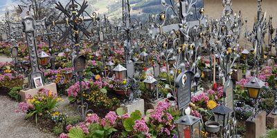 Blumen Haberler Gartenbau in Pölling Stadt Neumarkt in der Oberpfalz