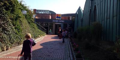 MAYA MARE GmbH & Co. KG in Halle an der Saale