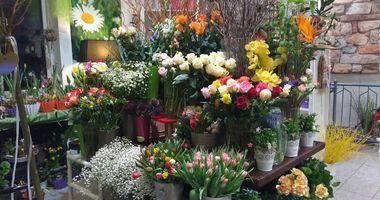 Blumen SunshineFlowers Sandra Besser in Neuried Kreis München