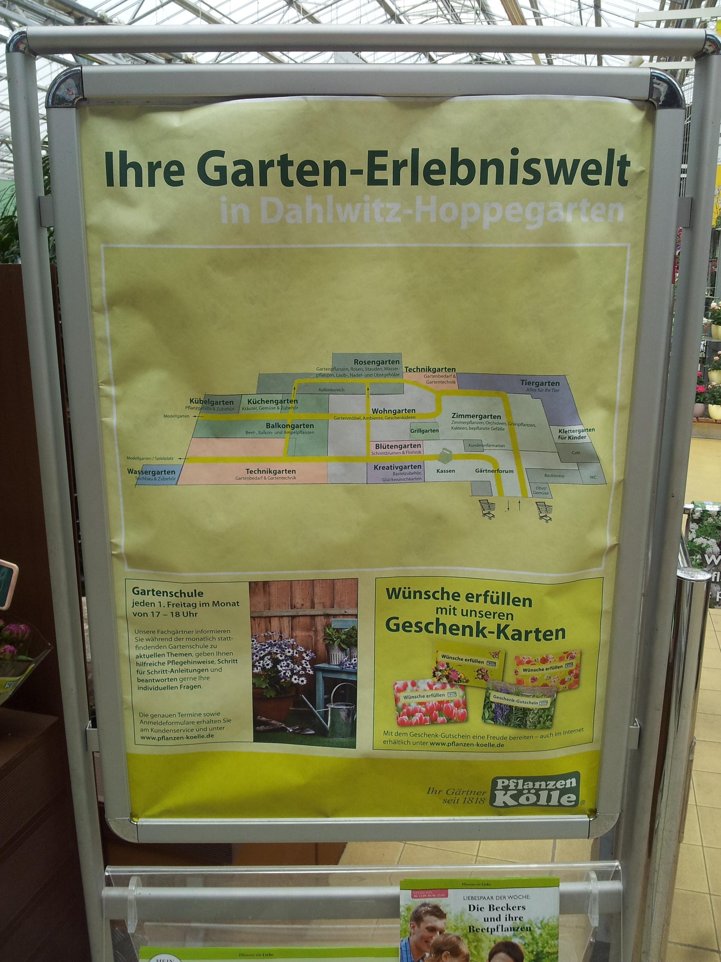 Pflanzen Kolle Gartencenter Gmbh Co Kg 15366