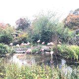 Karlsruher Zoo in Karlsruhe