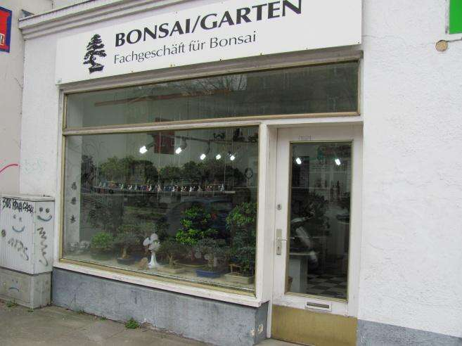 bilder und fotos zu tunnat wolf bonsai garten in hamburg. Black Bedroom Furniture Sets. Home Design Ideas