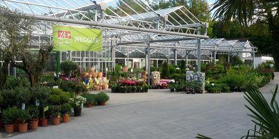 Weggler 1A Garten in Singen am Hohentwiel