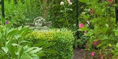 Garden of Roses in Spenge