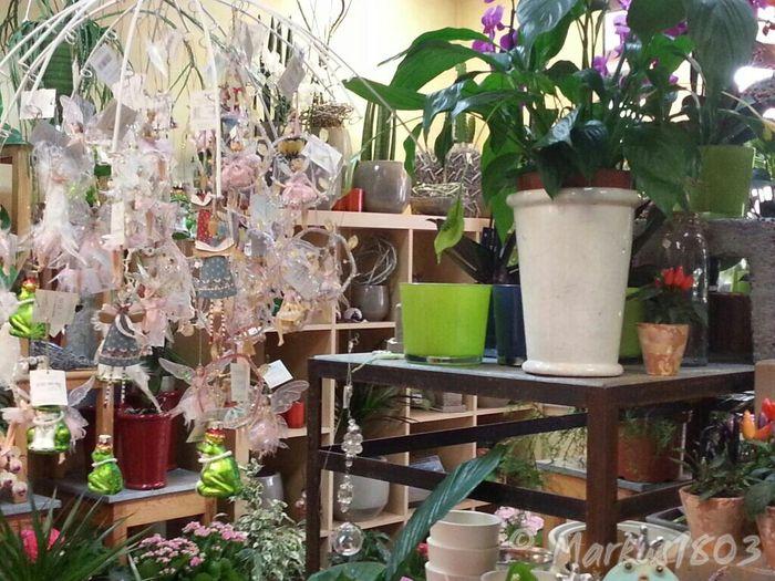 bilder und fotos zu stern floristik in l beck forstmeisterweg. Black Bedroom Furniture Sets. Home Design Ideas