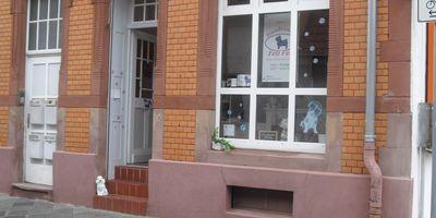 Fell Fein Hundesalon und Mobile Haustierbetreuung in Mannheim