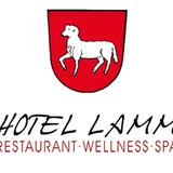 Hotel Lamm in Heimbuchenthal