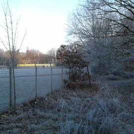 Bild zu Sportanlage Hirschgartendreieck in Berlin