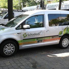 Bild zu OTS Schadock GmbH - Hönow in Hoppegarten