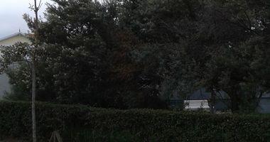 Grenzturm e.V., Verein zur Erhaltung von Denkmälern der Geschichte, Ostsee-Grenzturm in Ostseebad Kühlungsborn