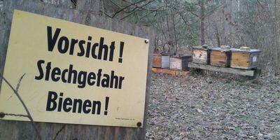 Bienenschiff Imkerei - Torsten Wiems in Erkner