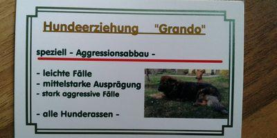 "Hundeerziehung ""Grando"" - Torsten Körner in Berlin"