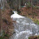 Waldhotel Silbermühle in Horn-Bad Meinberg