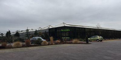 Fischer Pflanzenzentrum Blumenau in Rodgau