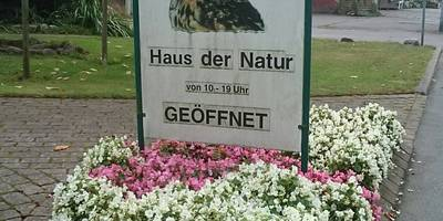 Haus der Natur in Cismar Gemeinde Grömitz