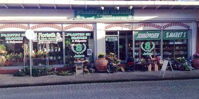 Planten un Blomen in Uetersen