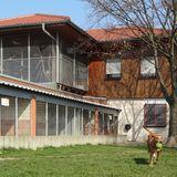 Tierschutzverein Offenbach e.V. Tierheim in Offenbach am Main
