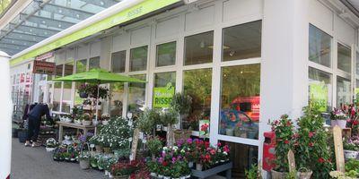 Blumen Risse, Aplerbeck in Dortmund