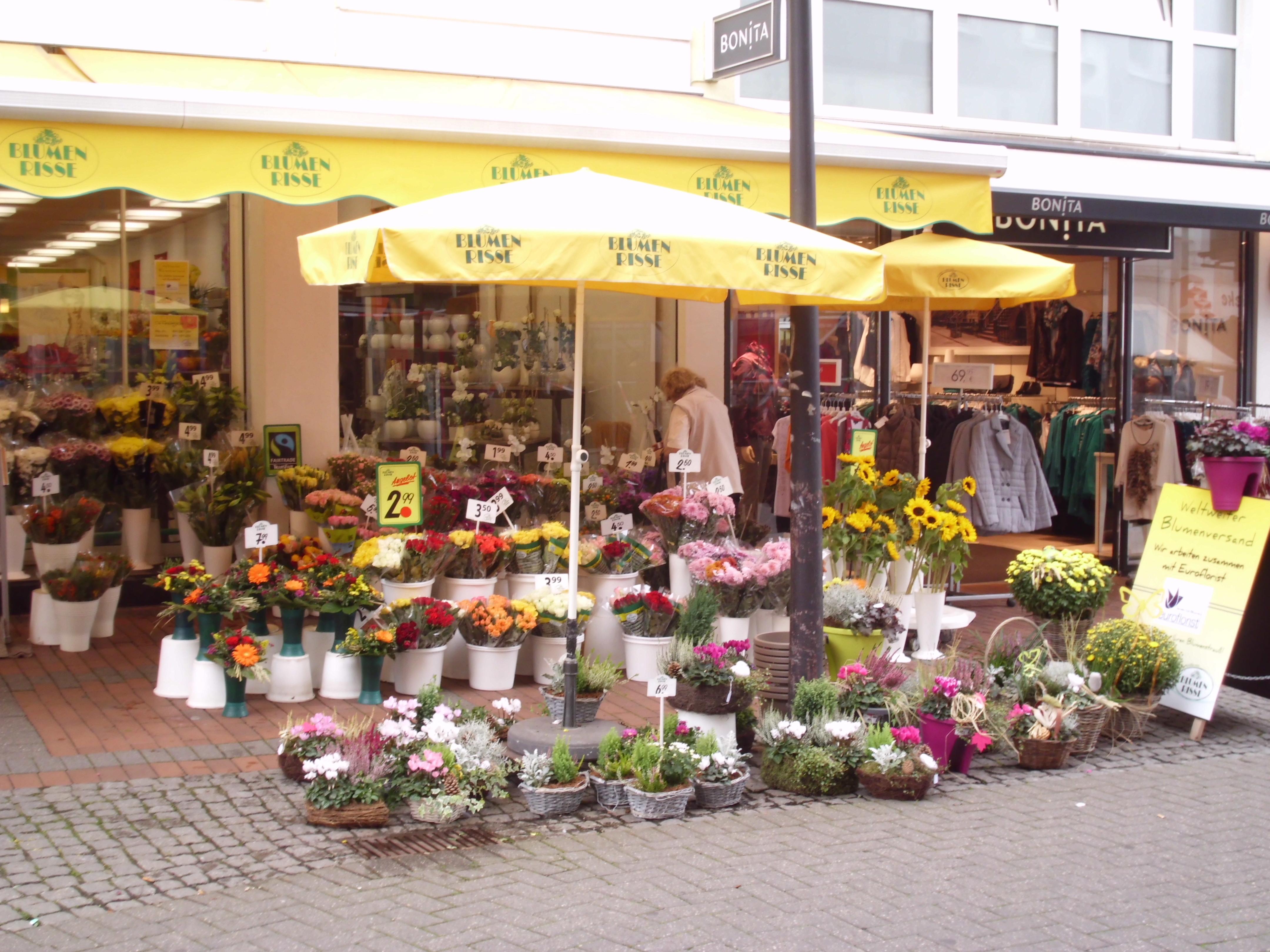 Risse Osnabrück