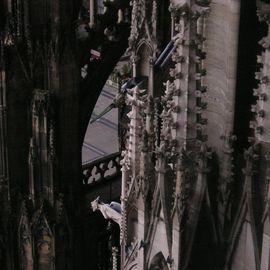 Bilder Und Fotos Zu Kolner Dom In Koln Domkloster Seite 11