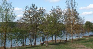 Murner See in Wackersdorf