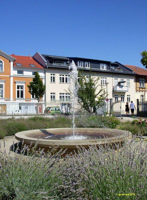 bilder und fotos zu restaurant weisse villa in berlin. Black Bedroom Furniture Sets. Home Design Ideas