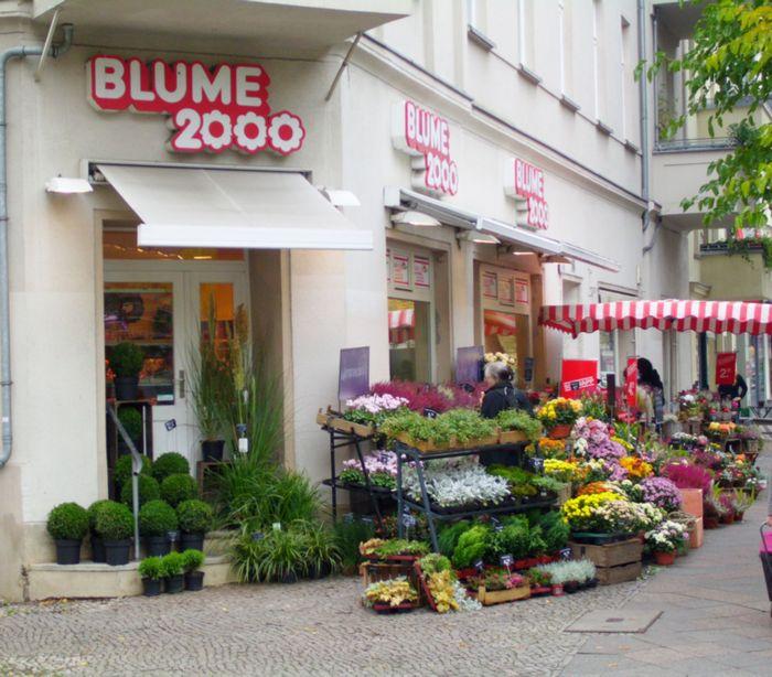 Filialen Berlin 2000 Blume
