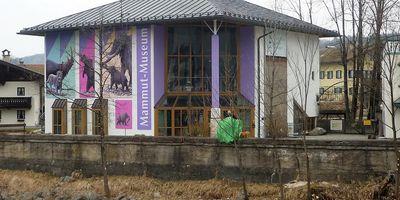 Südostbayerisches Naturkunde- und Mammut-Museum Siegsdorf in Siegsdorf Kreis Traunstein