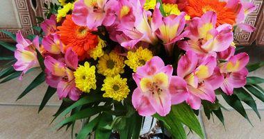 Gärtnerei und Blumengeschäft Hartmann in Dietzenbach