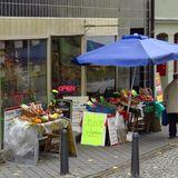 Thüringer Landhandel Inh. Silke Dörnfeld – Obst & Gemüse, Feinkost, frische Eier, Wurstwaren in Apolda