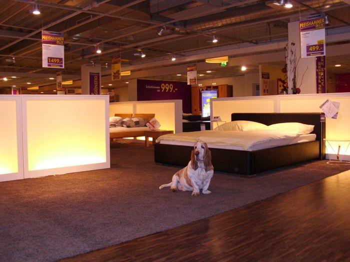 bilder und fotos zu m bel hausmann in bergheim an der erft. Black Bedroom Furniture Sets. Home Design Ideas