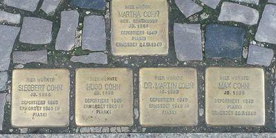 Stolpersteine Familie Cohn in Stralsund