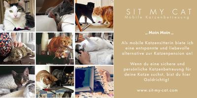 SITMYCAT - mobil Katzenbetreuung Hamburg in Hamburg