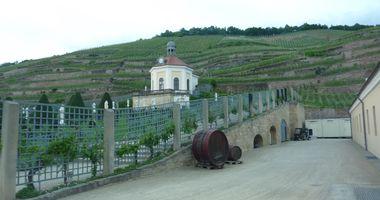 Sächsisches Staatsweingut GmbH Schloss Wackerbarth in Radebeul