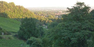 Winzerei Paradiesberg in Radebeul