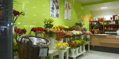 Blumen- und Pflanzenservice Inh. Mike Müller in Chemnitz in Sachsen