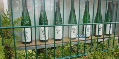 Weinbau Frédéric Fourré in Dresden