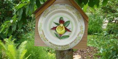 Verein der Orchideenfreunde Zwickau e.V. in Zwickau