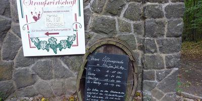 Weinbau & Straußwirtschaft Holger Schurig in Radebeul