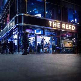 THE REED in Berlin