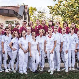 Bild zu Dres.med.vet. Manuela Schwede u. Holger Tierklinik Wittenberg Tierarzt Praxis in Lutherstadt Wittenberg