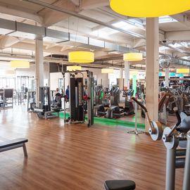 FitnessLOFT Braunschweig in Braunschweig