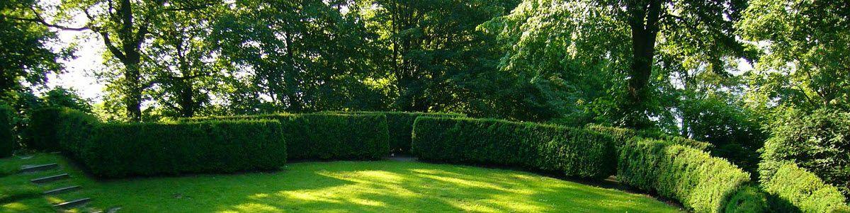 Ems Garten 1 Foto Lingen An Der Ems Wachendorf Muhlengraben Golocal
