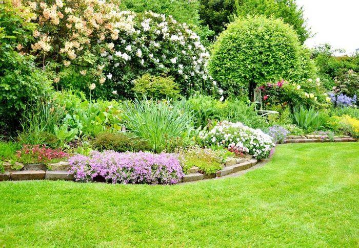 Bilder Und Fotos Zu Röver Gartencon Garten Und Landschaftsbau In