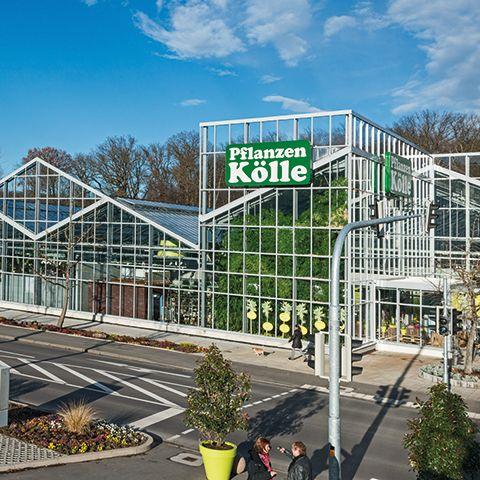 Pflanzen Kolle Gartencenter Gmbh Co Kg Stuttgart 14 Bewertungen